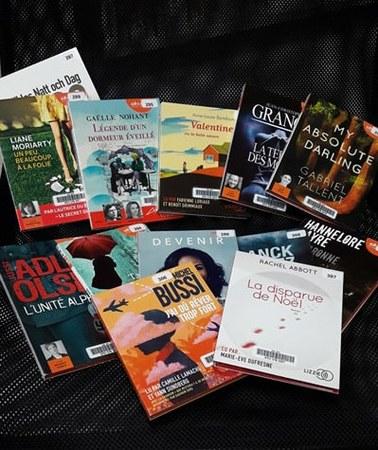 Connaissez -vous les livres audio ?