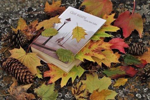 Nouvelles acquisitions de la bibliothèque - Octobre 2019