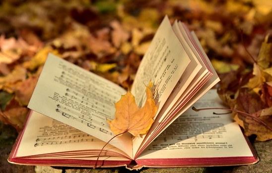 Nouvelles acquisitions de la bibliothèque - Septembre 2019